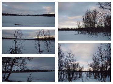 Danau yang beku